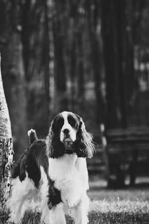 ©Betsy_Barron_PhotographyDSCF8872BW