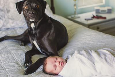 Sawyer Wilson Newborn 043