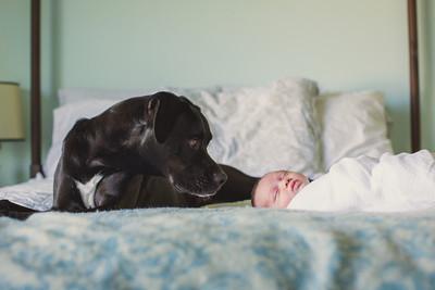 Sawyer Wilson Newborn 045
