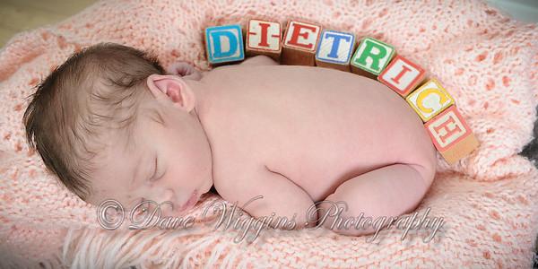 Baby Dietrich  - April 2016