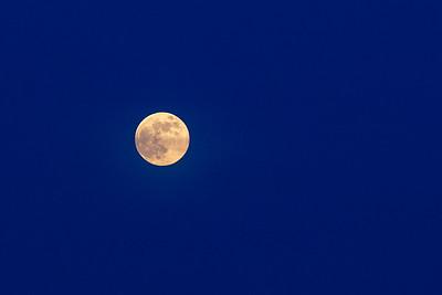 EI_Friday_Moon_0061