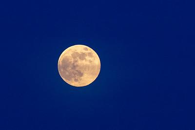 EI_Friday_Moon2_0061