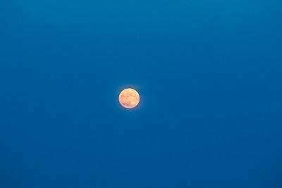 EI_Friday_moon_0049