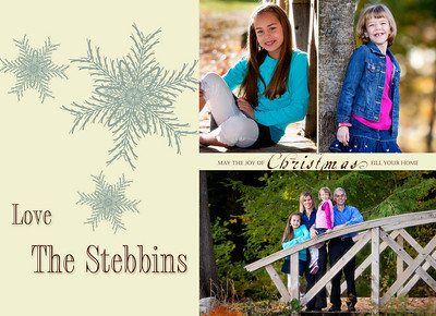filmstrip snowflakes Stebbins