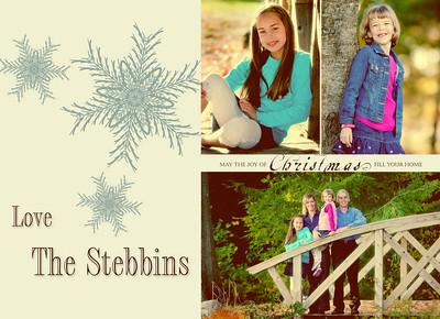 filmstrip snowflakes 3up-tintedstebbins