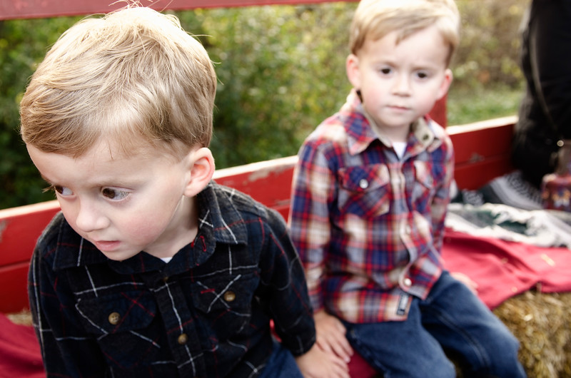 Photo of children curious on hayride at Godsell Farms in Mukwonago WI.