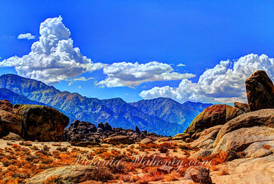 Whitney Range from Ala Hills