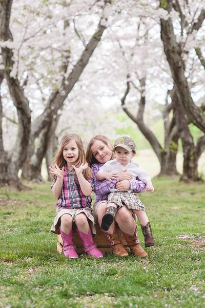 Marisa Cherry Blossom Mini Session