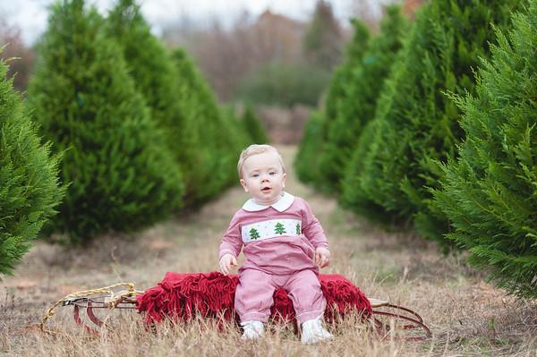 Rehberg Family Christmas Mini 2015