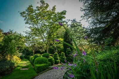 Fischer's new garden -0017