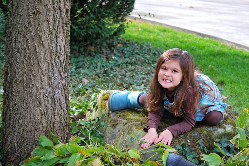 Scary Kitty !!   Estella ....October 2010... 6 years old