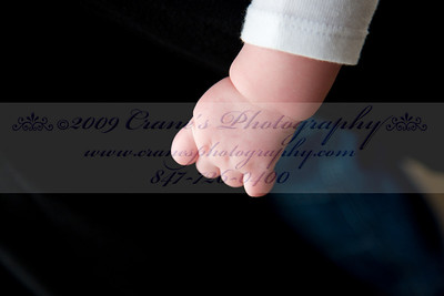 ©2009 CRANE'S  0036