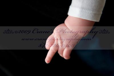 ©2009 CRANE'S  0032