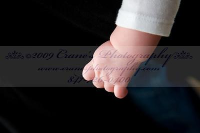 ©2009 CRANE'S  0033