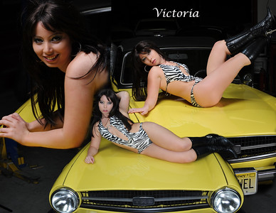 Victoria TR6 11x85 Collage