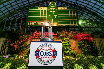 051017 Cubs Trophy