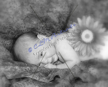 Safina -Ashley -43