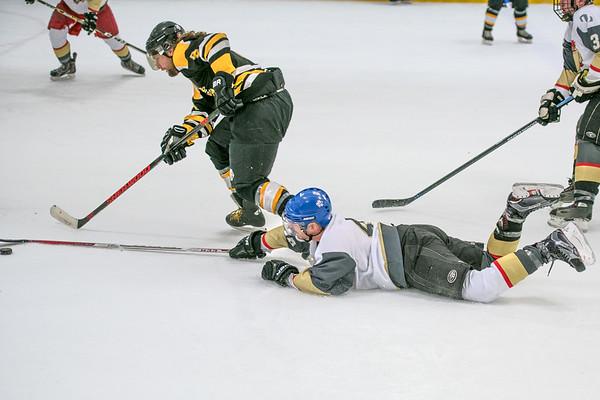GameCocks Hockey