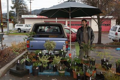 Grants Pass Growers market, Oregon