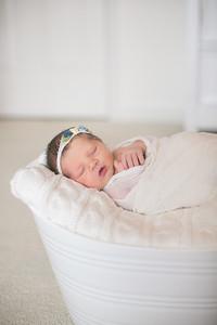 IMG_Newborn_Photography_High_Point_NC-3213