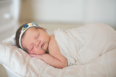 IMG_Newborn_Photography_High_Point_NC-3301