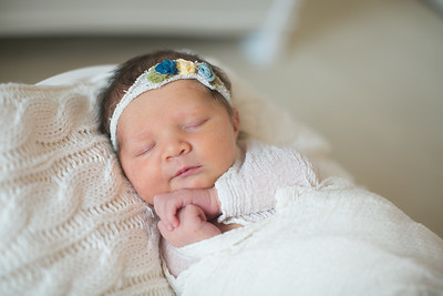 IMG_Newborn_Photography_High_Point_NC-3267
