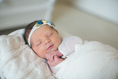 IMG_Newborn_Photography_High_Point_NC-3258