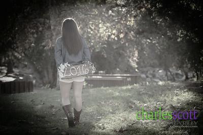 D8H_3715