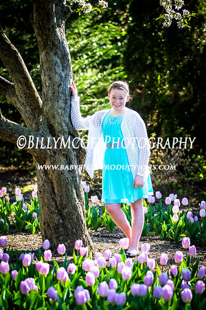 Tulips at Sherwood Gardens - 13 Apr 2016