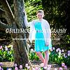 Sherwood Garden Tulips - Baltimore City Maryland