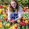 Tip Toeing Thru The Tulips - 16 Apr 2017