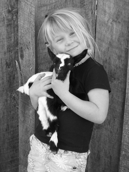 If you'd like a picture of your child with a pony, baby miniature donkey, baby chick or duck, or baby goat, we can usually provide those (baby goats usually in the spring, but ponies avaialbe all the time).