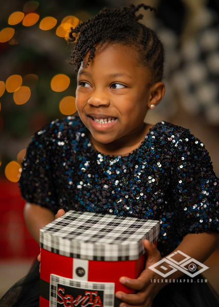 Holiday Minis 2020-07473