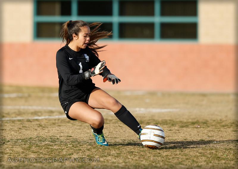 SMCHS JV Soccer 2015-16, 1/21/16.