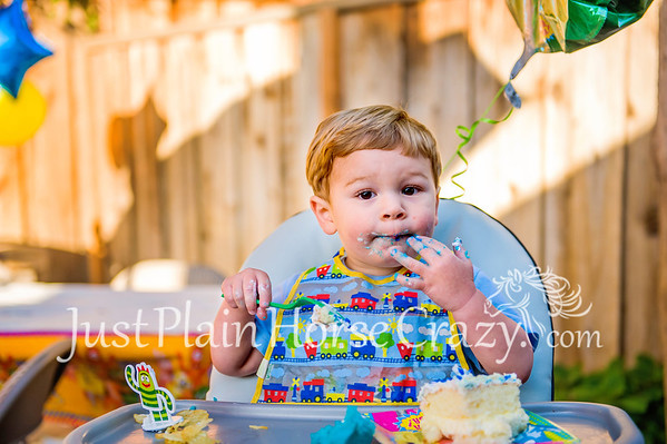 Jackson's 2nd Birthday
