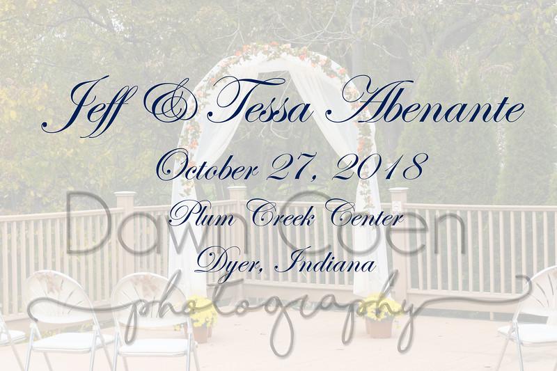 Tessa & Jeff Abenante Wedding 0085 Oct 27 2018_edited-1