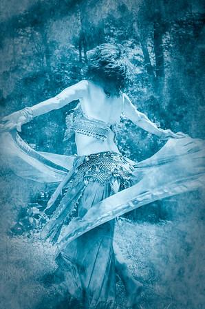 Moonlit Dance Diana Sherblom Photography