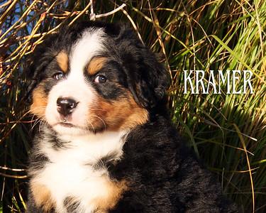 Kramer 9242