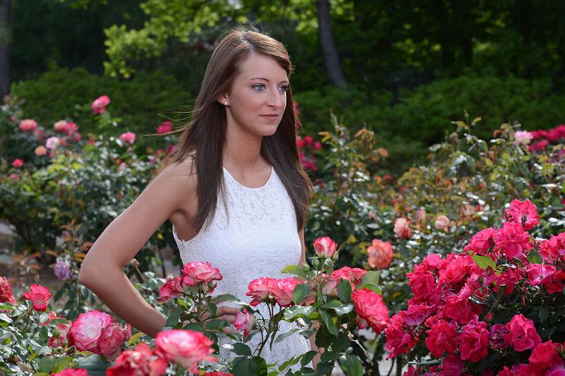 Lauren WD 331