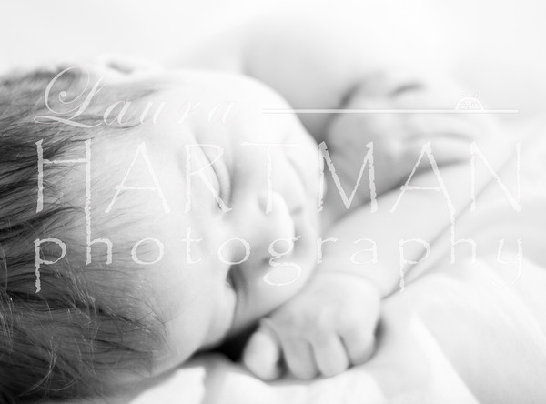 This one is so gentle. The soft focus and the little baby hair. Photographer Favorite. _LH