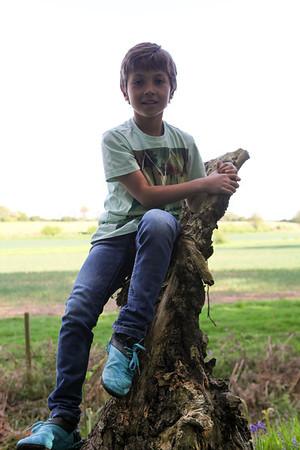 linton kerr blue bell woods 2013