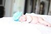 Austin Newborn Photographer