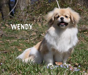 Wendy 0494