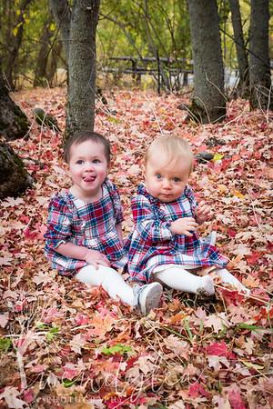 wlc Logan Families  3722018