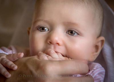 Baby Wallis