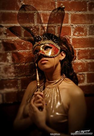 Masquerade photo shoot at the Brick house gallery, Sacramento.
