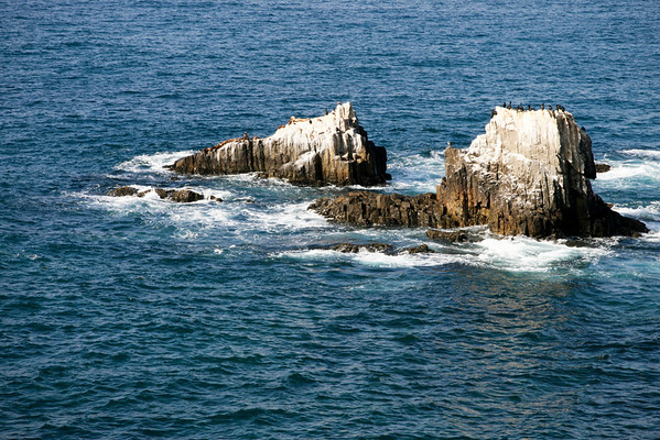 Seal Rock in Laguna beach