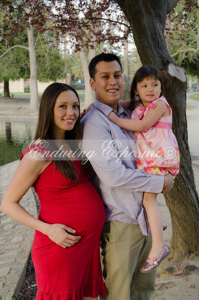 Mitchell-family-39