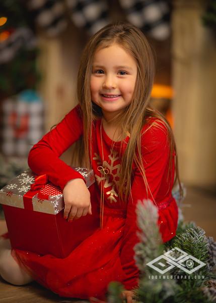 Holiday Minis 2020-07545