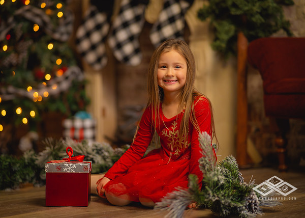 Holiday Minis 2020-07543